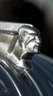 031 - cabeza Pontiac